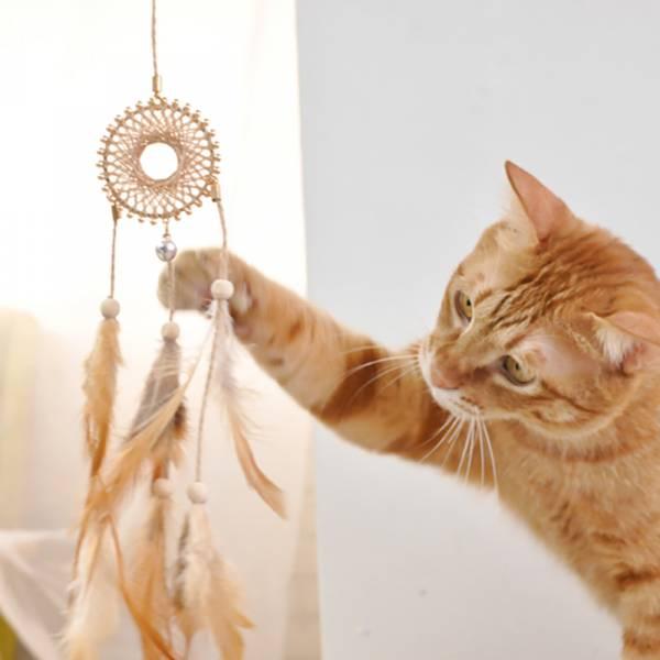 【主子也想捕夢網】捕夢網逗貓棒
