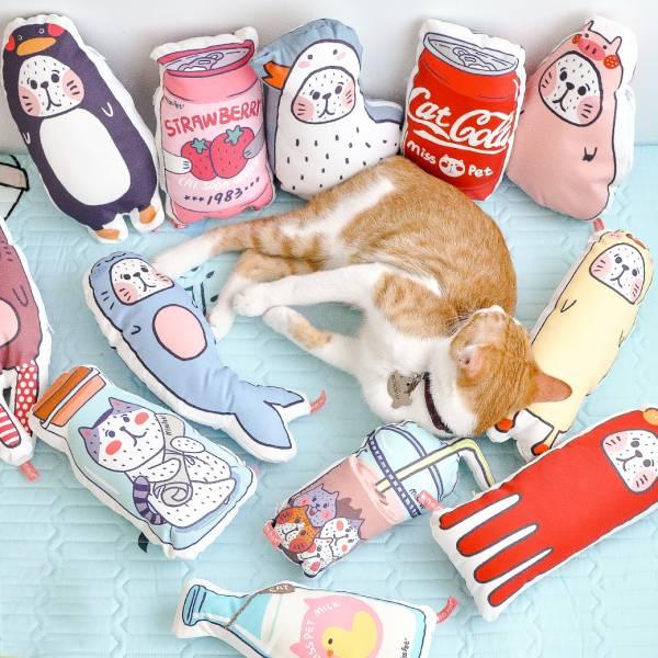 【十二個抱抱】貓草包玩具