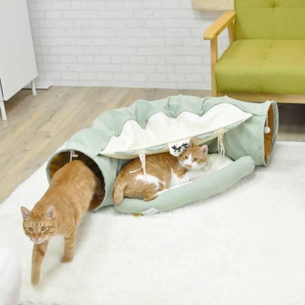 【主子小型遊樂園】4大主題貓咪隧道