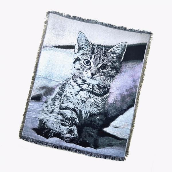 *【沙發上有隻大貓咪】多功能沙發毯