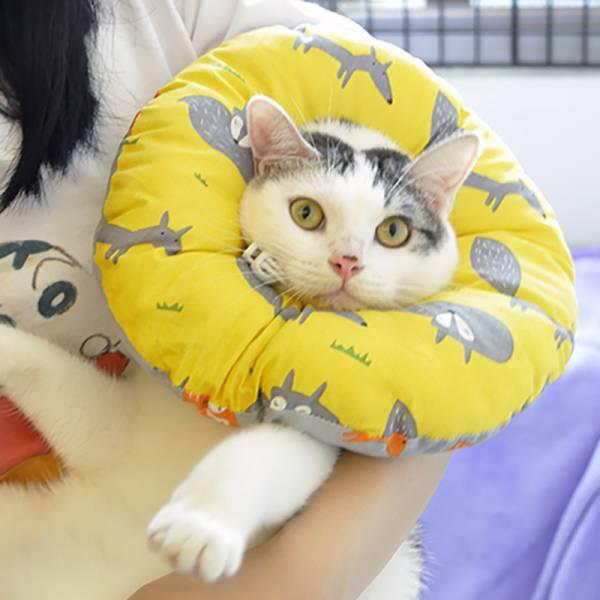 *【想舔舔不到】甜甜圈防舔套 頭套,防舔用品,貓頭套,伊麗莎白項圈