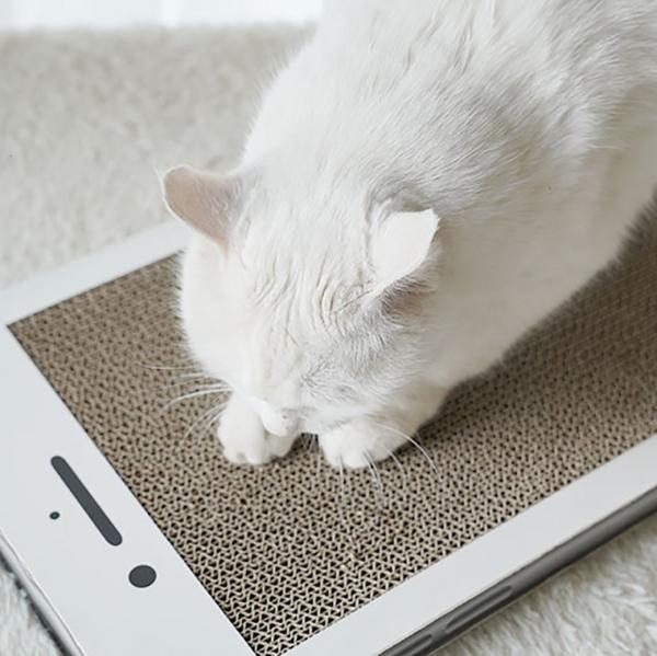 【手機給抓嗎】手機貓抓板 貓抓板,竉物用品,貓玩具