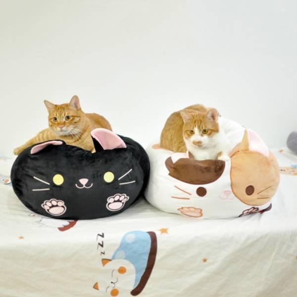 【靠山靠海不如靠喵】多功能日式貓咪靠枕