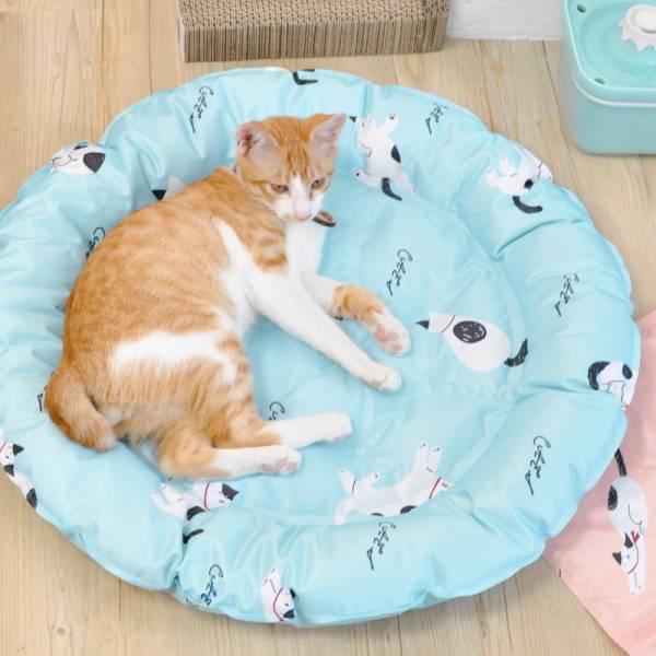 【給主子涼爽的夏日】寵物冰墊 寵物冰墊,冰窩,貓咪涼墊