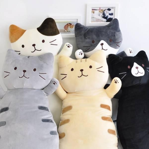 【抱一下療癒貓貓】抱枕5個一組-免運