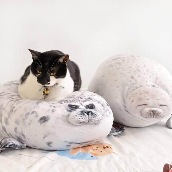 【抱抱海豹君】海豹 海豹,玩偶,貓,踏踏