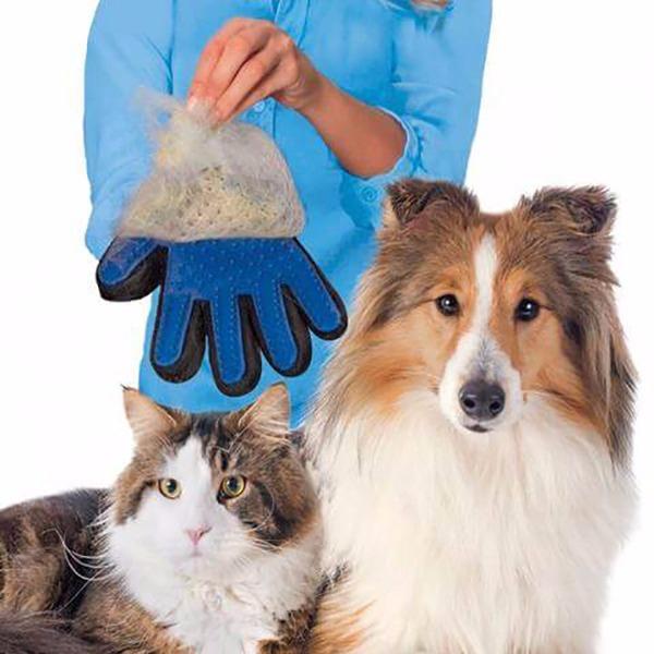 貓貓說幫我按摩和除毛 除毛手套,竉物用品