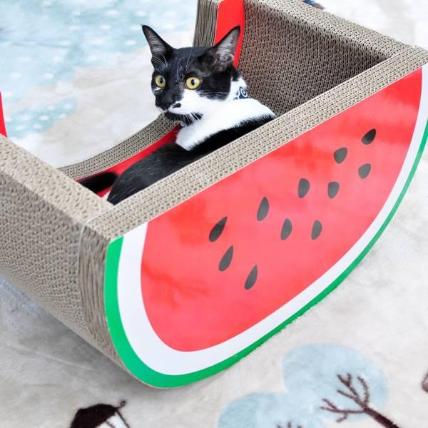 【主子也想吃西瓜】西瓜貓抓板 貓抓板,竉物用品