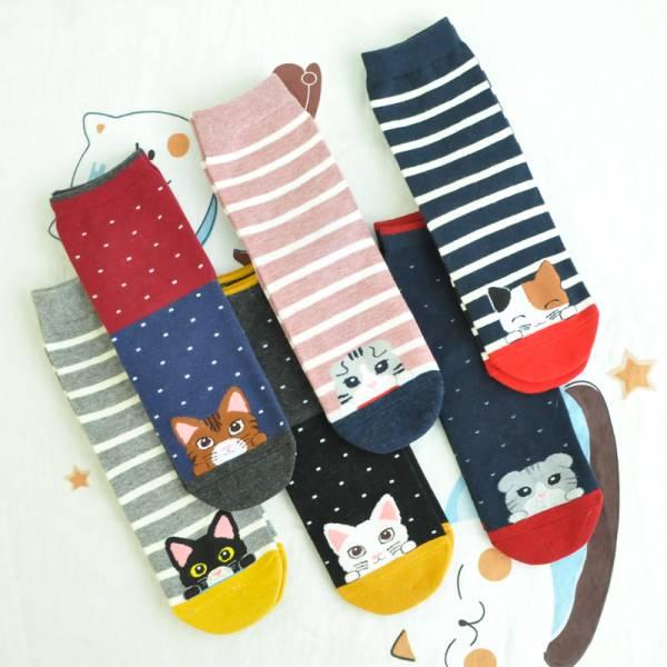 【躲在襪子裡的俏皮喵】繽紛貓咪趣味中筒襪(6雙1組)