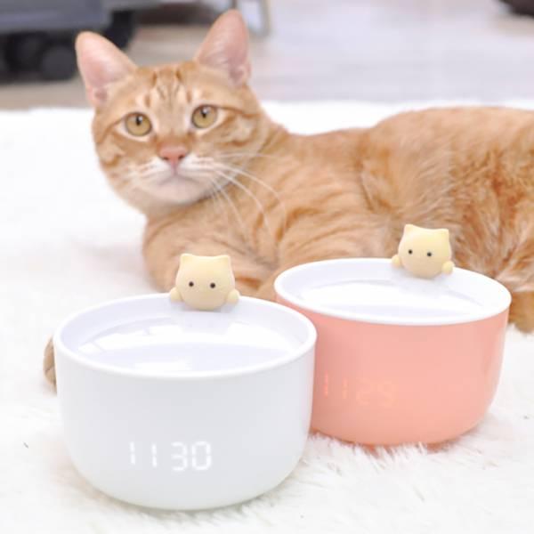 【點亮一碗茶碗燈】杯緣猫LED智能鬧鐘
