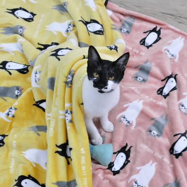 【不要跟我搶毛毯】毛毯 毛毯,溫暖,貓用,床