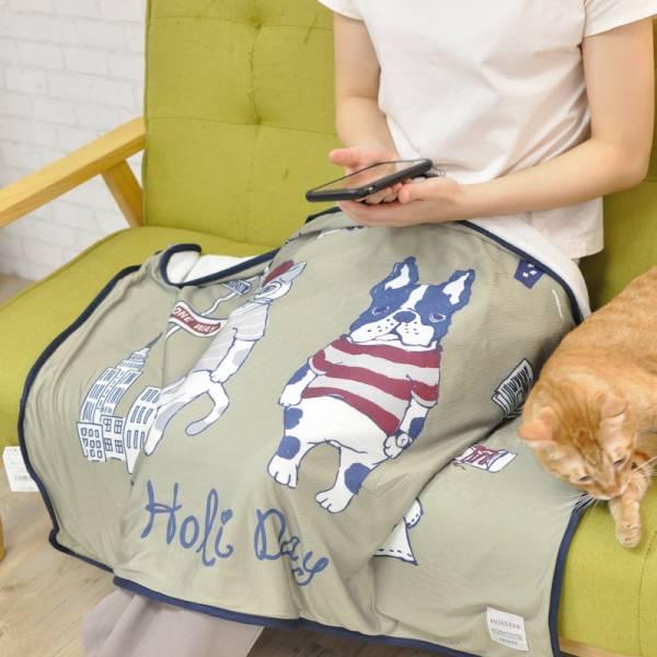【開空調蓋被喵】日本貓咪空調涼感毯