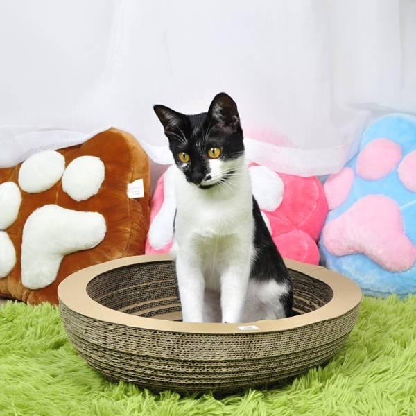 【怎麼抓都抓不膩】碗貓抓板 貓抓板,竉物用品,貓窩