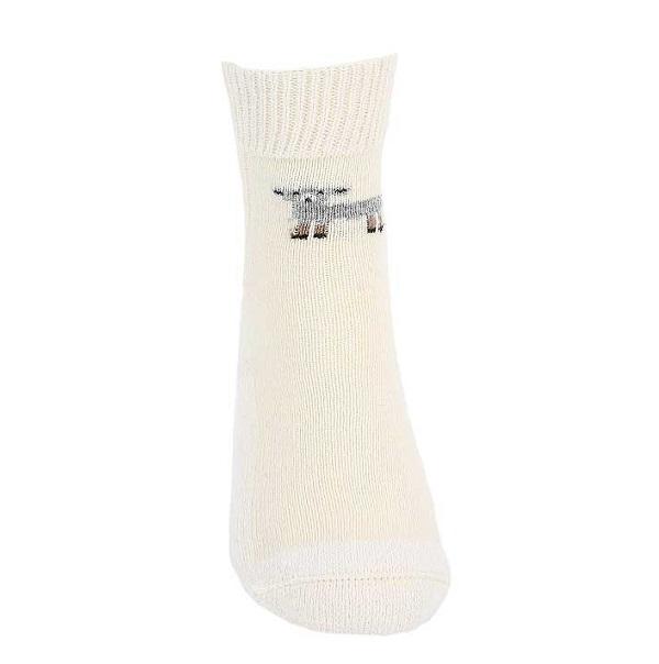 羊咩咩米白色紐西蘭羊毛襪(腳ㄚ子的羊毛衣*超厚襪) 登山毛襪雪地襪旅遊居家外出保暖襪推薦 保暖襪,毛襪,羊毛襪,登山毛襪,雪地襪