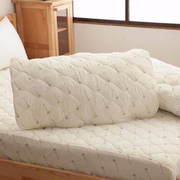 Ally 西崎 優質舒眠抗菌枕墊 二入組 Ally 西崎 優質舒眠抗菌枕墊 二入組