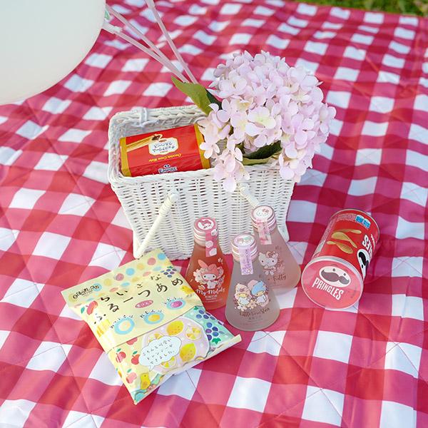 經典紅白格紋可機洗大尺寸200x150cm附提袋野餐墊 野餐墊,帳篷地墊,沙灘墊,防潮野餐地墊