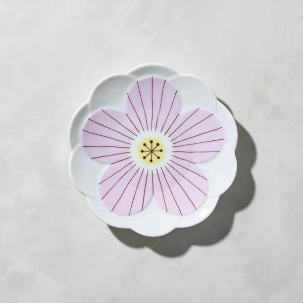 日本晴九谷燒 - 花見淺盤 - 粉 ★ 全部日本原裝精緻禮盒,送禮適宜