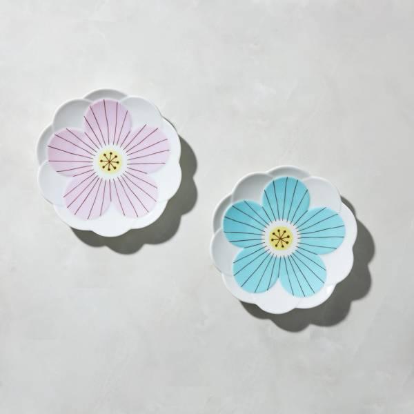 日本晴九谷燒 - 花見淺盤(2件組) ★ 全部日本原裝精緻禮盒,送禮適宜