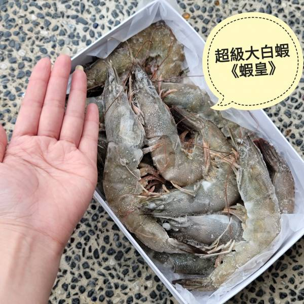 活凍白蝦(僅崩大)  每盒600g