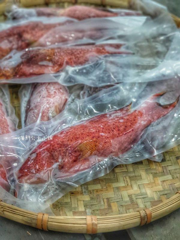 野生燕尾紅條魚400g尾