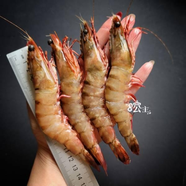 野生肥豬蝦 約15~18隻  400g