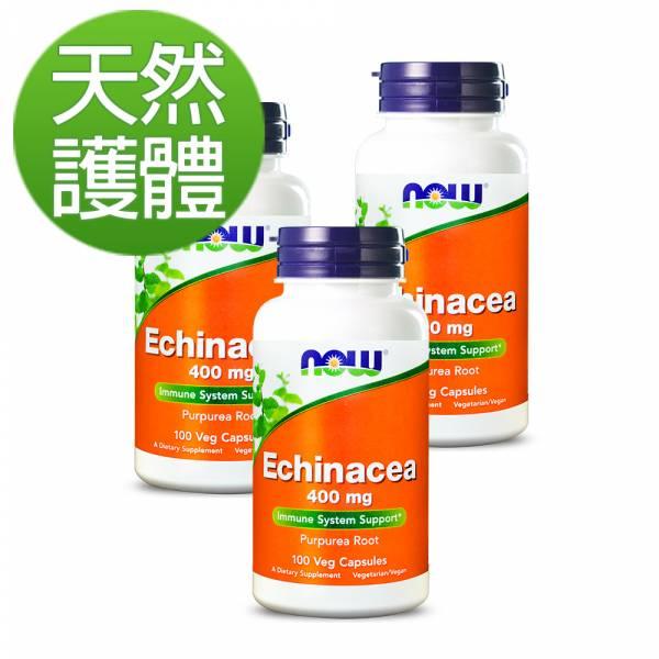 NOW健而婷 紫錐花加強配方 (100顆/瓶)三瓶組【天然護體】 紫錐花,抵抗力,免疫力