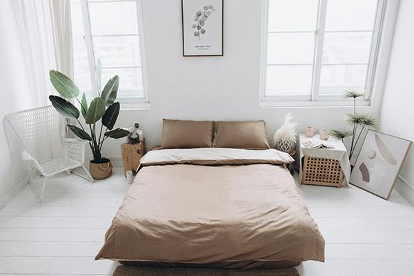 (拍照樣品)標準雙人 COLOR 咖啡卡其法蝶新品純色系列四件式床包被單組  5*6.2/6*7ST