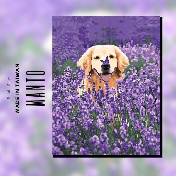 拉拉愛玩耍|MANTO創意數字油畫(4050M) 狗狗,拉布拉多,數字油畫,manto,數字畫