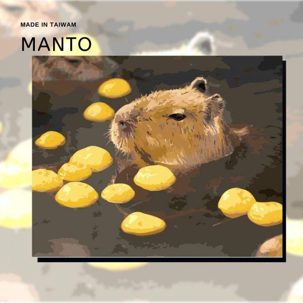 水豚君泡湯趣|MANTO創意數字油畫(4050) 水豚君,動物畫,數字油畫,manto,數字畫