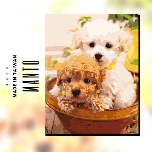貴賓小兄弟|MANTO創意數字油畫(4050M) 貴賓狗,風景畫,數字油畫,manto,數字畫