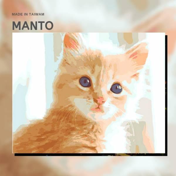 萌萌喵星人|MANTO創意數字油畫(4050M) 貓咪,北歐風畫,數字油畫,manto,台灣數字油畫,數字畫