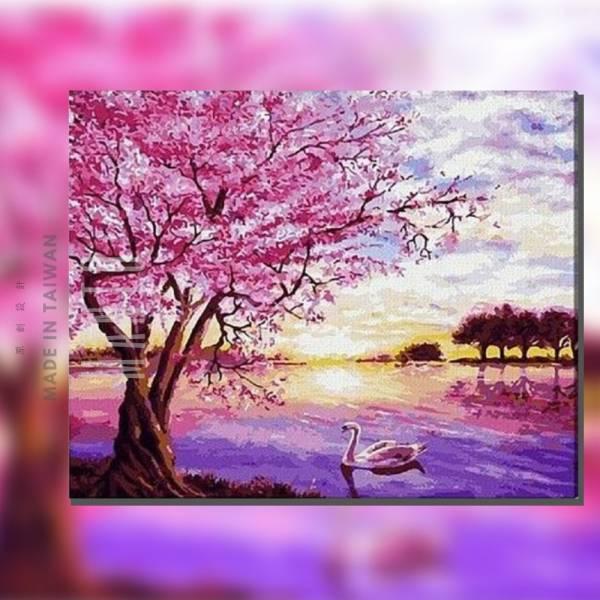 紫金焙櫻|MANTO創意數字油畫(4050) 櫻花,風景畫,日本,數字油畫,manto,台灣數字油畫,數字油畫批發,數字油畫團購