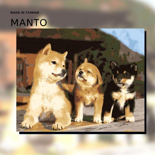 手足之情|MANTO創意數字油畫(4050) 狗狗,柴犬,數字油畫,manto,數字畫
