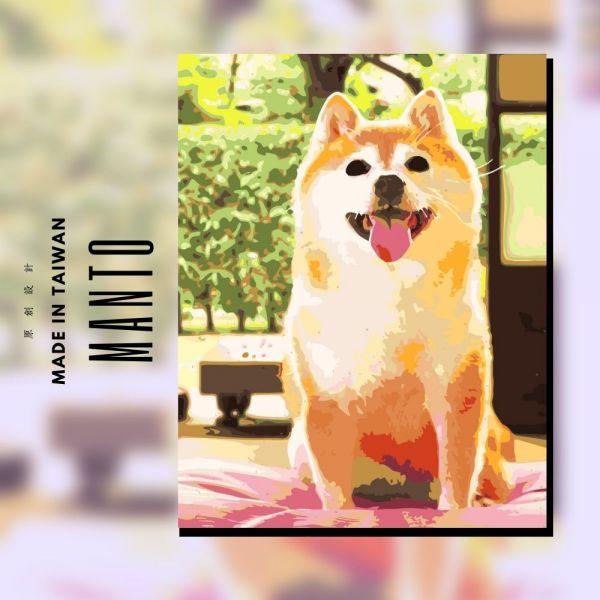 阿柴.要玩了嗎?|MANTO創意數字油畫(4050M) 柴犬,風景畫,數字油畫,manto,數字畫