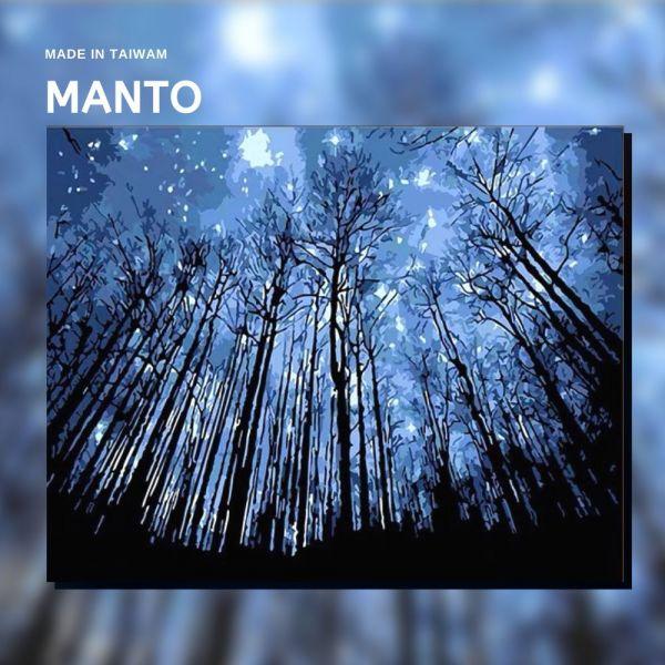 星空之森|MANTO創意數字油畫(4050M) 星空之森,風景畫,數字油畫,manto,數字畫