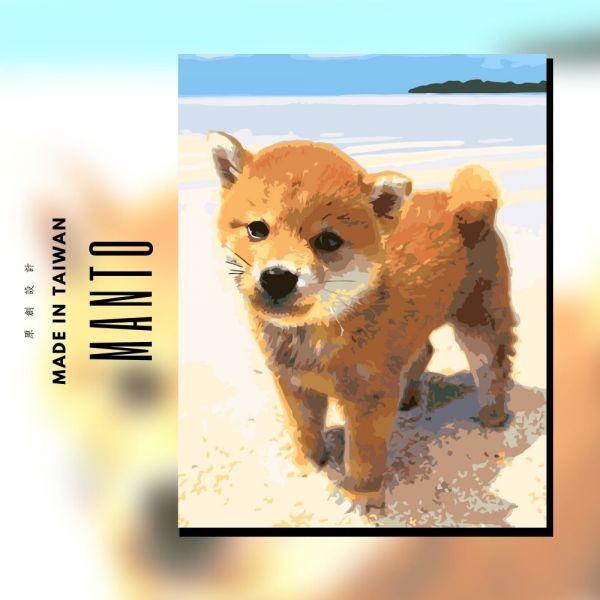 阿柴.海邊走走|MANTO創意數字油畫(4050M) 狗狗,柴犬,數字油畫,manto,數字畫