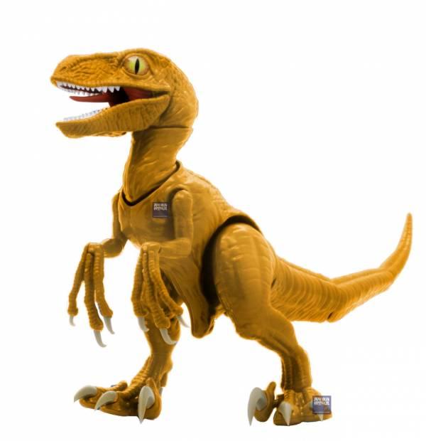 Velociraptor 迅猛龍 恐龍橘色 FUJIMI 自由研究3EX1 恐龍編 富士美 組裝模型 FUJIMI,自由研究,恐龍,Tyrannosaurus,暴龍,