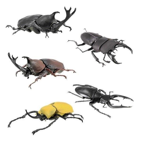 F-toys / 盒玩 / 昆蟲獵人 甲蟲收集 附糖果 / 全5種 一中盒10入販售 *10 F-toys,盒玩,昆蟲獵人,甲蟲收集