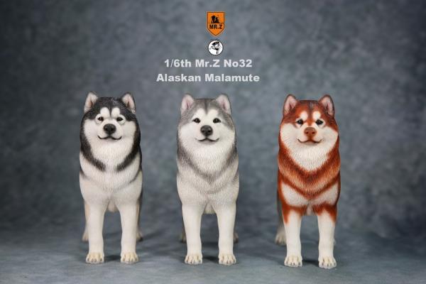 Mr.Z / 老朱 / 1/6 / 模擬動物模型第32彈 / 阿拉斯加雪橇犬/ 全3種 / 個別販售 Mr.Z,老朱,仿真名犬系列,1/6,第32彈,阿拉斯加雪橇犬,哈士奇
