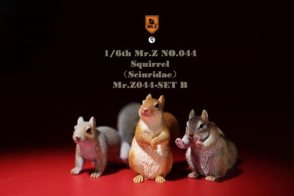 MR.Z 模擬動物模型 第44彈 金鼠迎春 小松鼠套裝 B套組 Mr.Z,模擬動物模型,第44彈,金鼠迎春,小松鼠套裝,B套組