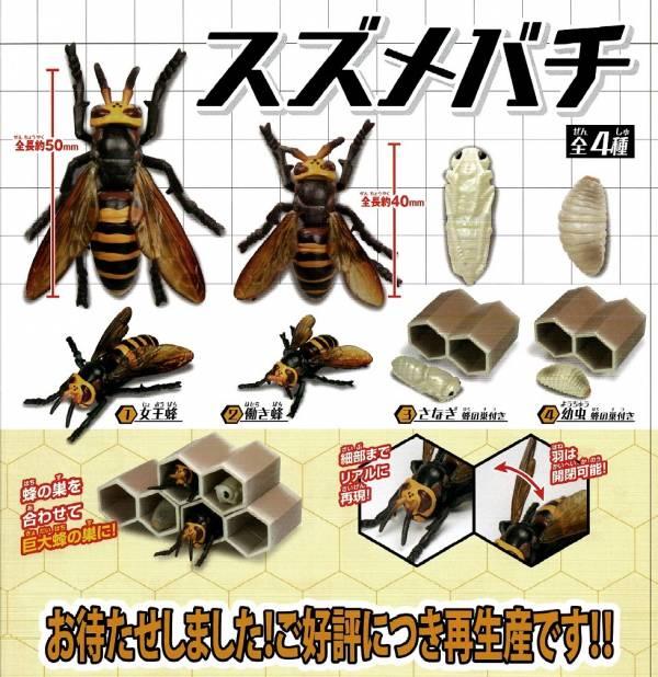 EPOCH 扭蛋 大黃蜂 蜂蛹 翅膀可動 隨機5入販售 EPOCH,扭蛋,大黃蜂,蜂巢