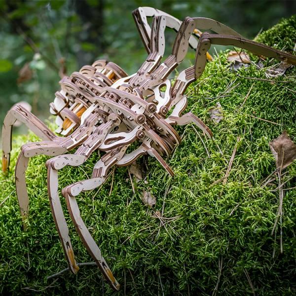 Ethne 白俄羅斯 EWA 暴走蜘蛛 木頭組裝動力模型 EWA001 Ethne,質木模型,白俄羅斯,EWA,暴走蜘蛛,木頭組裝動力模型