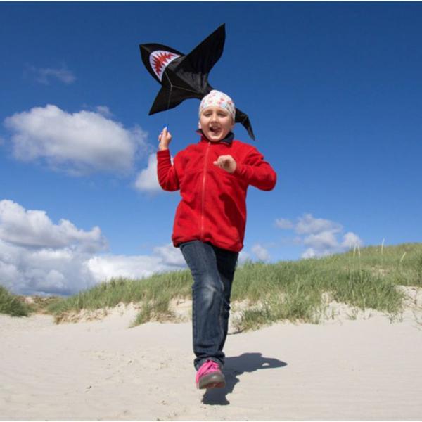 【JAKO-O】鯊魚造型風箏 JAKO-O,幼兒運動,放風箏,造型風箏,手眼協調,戶外活動