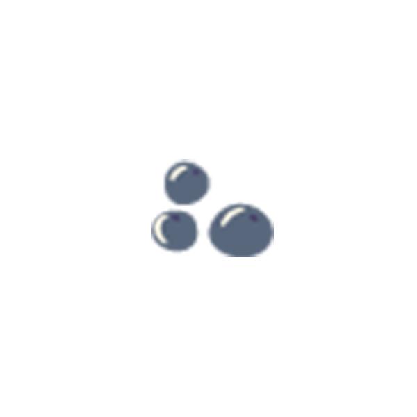 配料 -藍莓