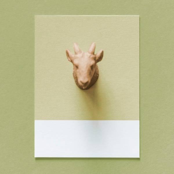 《羊頭 小卡》