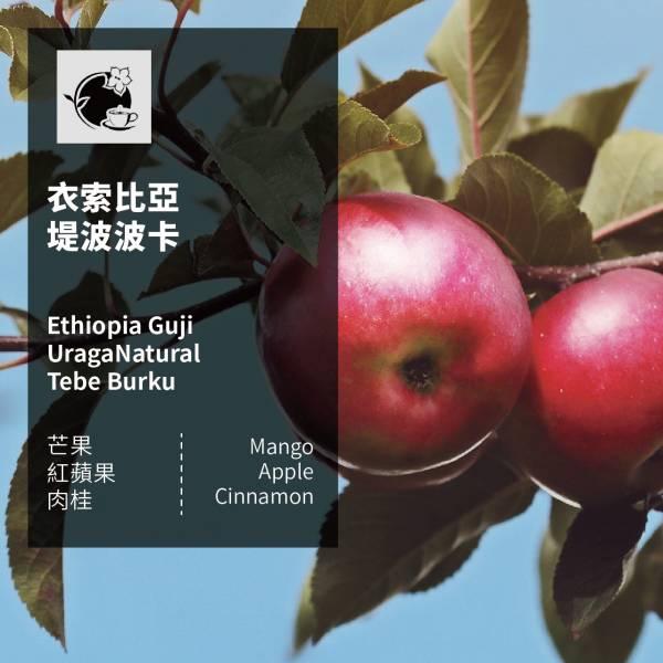 【微光咖啡】 衣索比亞 堤波波卡 咖啡豆 微光咖啡, 衣索比亞, 堤波波卡, 咖啡豆