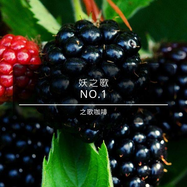 【之歌咖啡】 妖之歌 NO.1 咖啡豆 之歌咖啡, 妖之歌, NO.1, 咖啡豆