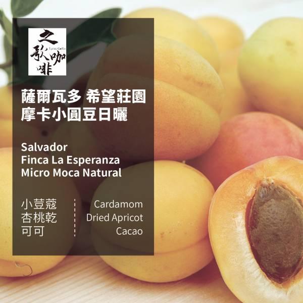 【之歌咖啡】 薩爾瓦多 希望莊園 摩卡小圓豆 日曬 咖啡豆 之歌咖啡, 薩爾瓦多, 希望莊園, 摩卡小圓豆, 日曬, 咖啡豆