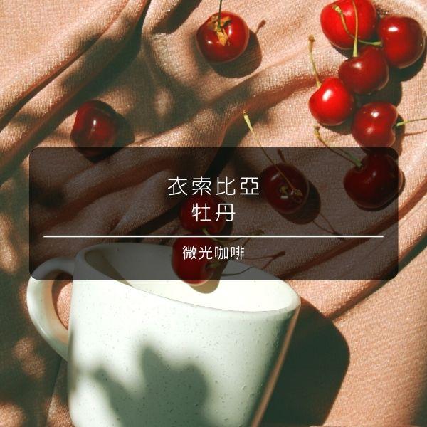 【微光咖啡】 衣索比亞 牡丹 咖啡豆 微光咖啡, 衣索比亞, 牡丹, 咖啡豆