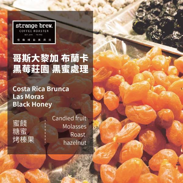 【怪咖啡】 哥斯大黎加 布蘭卡 黑莓莊園 黑蜜處理 咖啡豆 怪咖啡, 哥斯大黎加, 布蘭卡, 黑莓莊園, 黑蜜處理, 咖啡豆